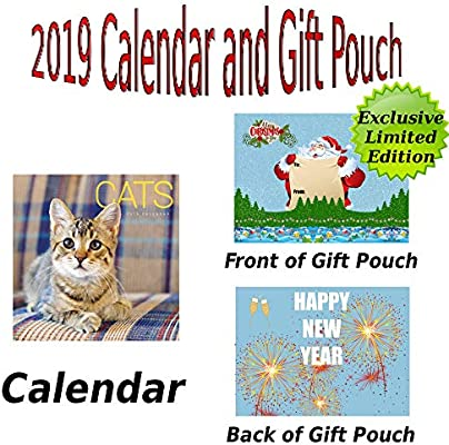 Calendario de pared para gatos Wiro 2019 + bolsa de regalo de calendario de alta calidad: Amazon.es: Oficina y papelería