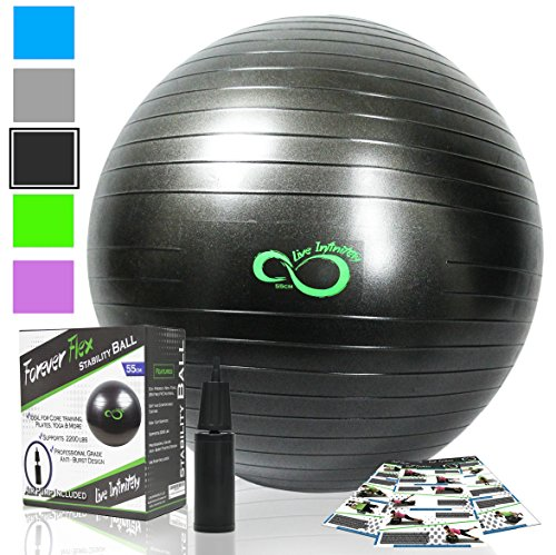 Exercise Ball -Professional Grade Anti Burst Tested with Hand Pump- Supports 2200lbs- Includes Workout Guide Access- 55cm/65cm/75cm/85cm Balance Balls (Grey, 45 cm)