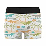 InterestPrint Men's All-Over Print Boxer Briefs Funny Africa Cartoon Crocodiles for Kids L