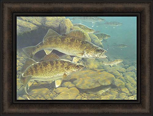 (Home Cabin Décor 'Golden Opportunity' by Al Agnew Signed 16x21 Walleye Fish Fishing Lake Framed Art Print Picture)