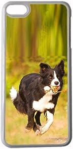 Design Collie Compatible for iPhone 6 6S 4.7Inch for Men Case Hard Plastic Shockproof
