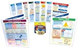 NewPath Learning 10 Piece Mastering Math Visual Learning Guides Set, Grade 8-10