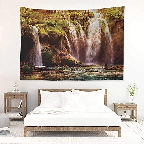 Nature,Wall Decor Tapestry Waterfall Cascade Forest Tree Moss Lake Stones Rocks Wonder of The World Image 60W x 51L inch Tapestry Wallpaper Home Decor Green and Brown (Planter Cascade Small)