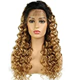 360 Lace Frontal Wig Brazilian Remy Ombre 1B 27 Curly Human Hair Wigs For Black Women Pre Plucked With Baby Hair (12inch with 150% density)