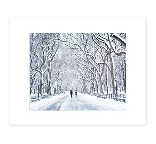American West Picture Frame - New York City Wall Art, Central Park in Snow, NYC Decor, 8x10 Matted Photographic Print(fits 11x14 frame), 'The Mall In Winter'