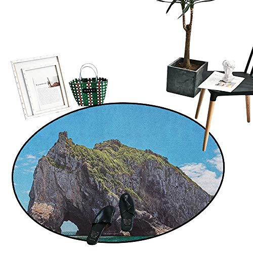 - Beach Round Rugs for Bedroom Famous Elephant Shape Rock with The Grand Hole in Bay of Islands Nz Cavern Peaceful Circle Rugs for Living Room (43