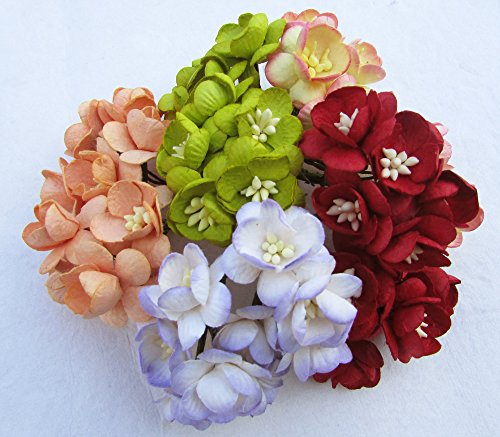 25 Pcs Cherry Blossom mixed color Mulberry Paper Flower 25 mm Scrapbooking Wedding Doll House Supplies Card Project