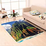 Nalahome Custom carpet tions Aerial View of Na Pali Coast Kauai Hawaii Mountain Cliff Seacoast Scenic Photo Green Brown area rugs for Living Dining Room Bedroom Hallway Office Carpet (5' X 8')