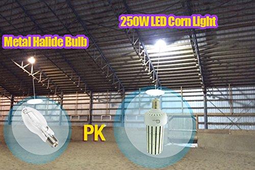 Ul Cul 250w Led Corn Cob E39 Large Mogul Base 1000 Watt