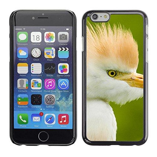 "Premio Sottile Slim Cassa Custodia Case Cover Shell // V00003126 Héron garde-boeufs floride // Apple iPhone 6 6S 6G 4.7"""