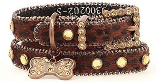 Bejeweled Collars - Blazin Roxx Dog Collar 9300202 3/4-in Pet Collar Brown with Dog Tag and Bling (Small), Multi-colored