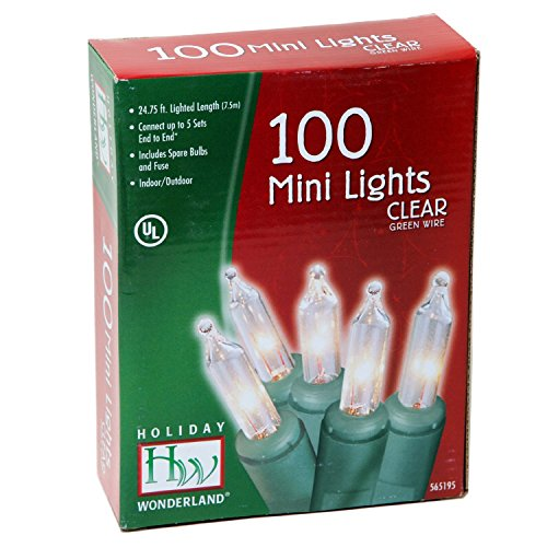 Holiday Wonderland 100-Count Clear Christmas Light Set Clear String Lights