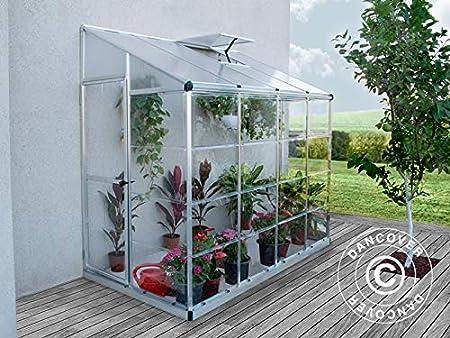 Dancover Invernadero Adosad de Policarbonato, 3, 05m², 1, 25x2, 44x2, 25m, Plateado: Amazon.es: Jardín