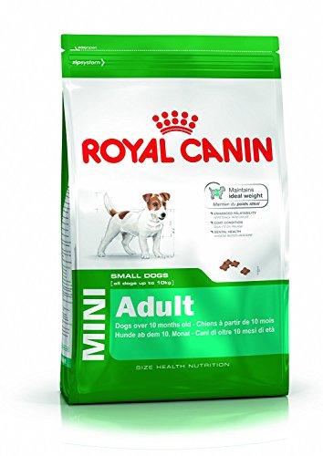 Royal Canin Mini Adulto 2 Kg