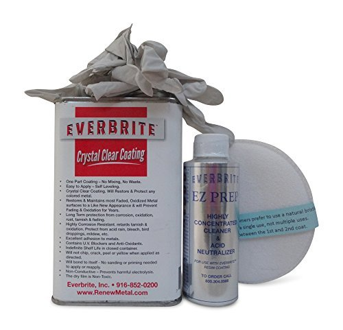 Way Coated 2 Silicone Latex - EVERBRITE Starter Kit (16 Oz.)