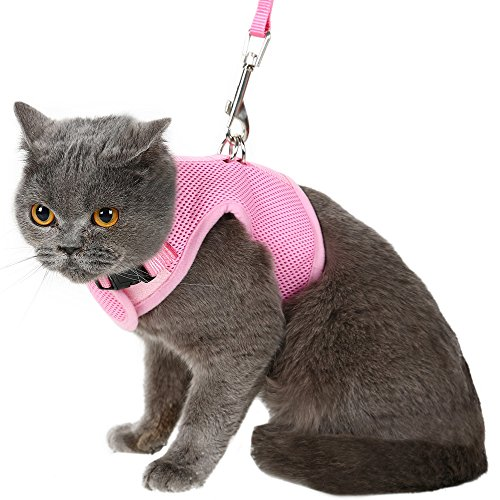 Escape Proof Cat Harness with Leash - Adjustable Soft Mesh - Best for Walking Pink Large from PUPTECK