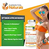 Natural African Mango Extract Dietary Supplements| Irvingia Gabonensis Extract Supports Blood Sugar Control | Maintain Digestive Health | Promote Metabolism. - 51 2B2cSkMRdL - Natural African Mango Extract Dietary Supplements| Irvingia Gabonensis Extract Supports Blood Sugar Control | Maintain Digestive Health | Promote Metabolism.