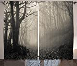 Ambesonne Gothic Decor Collection, Path on the Gothic Forest Trees Foggy Mysterious Nature Monochrome Art, Living Room Bedroom Curtain 2 Panels Set, 108 X 90 Inches, Cloudy Gray Review