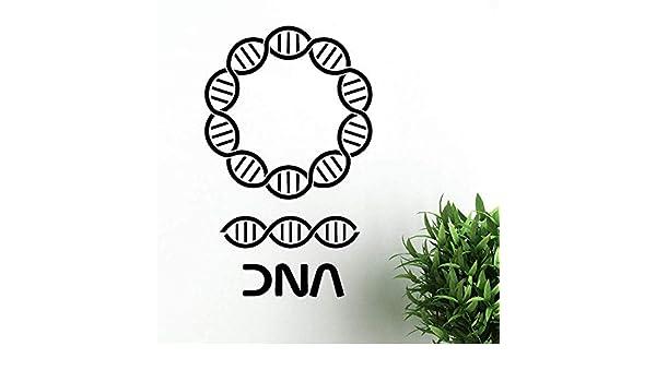 3D Etiqueta De La Pared Pegatinas De Pared De Adn Genealogía ...