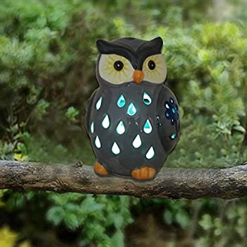Amazon Com Collections Etc Solar Owl Garden Stake White