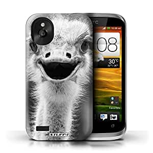 KOBALT? Protective Hard Back Phone Case / Cover for HTC Desire X | Ostrich/Emu Design | Mono Zoo Animals Collection