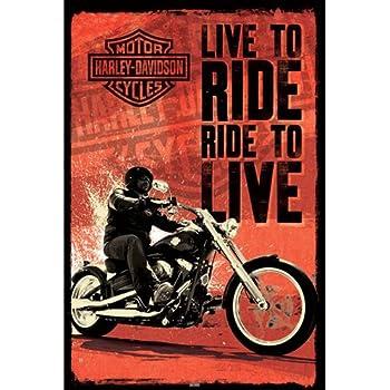Harley Davidson - Live to Ride