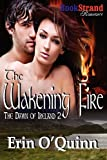 The Wakening Fire, Erin O'Quinn, 1622414365