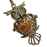 Best Healing Solutions doTERRA Essential Oil Diffuser Young Livings - YOur perSOnal STYlish Essential oil necklace Steampunk owl Review