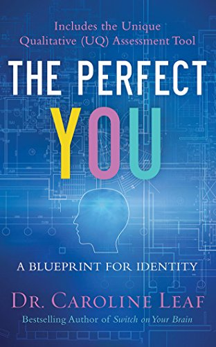 The Perfect You: A Blueprint for Identity by Brilliance Audio