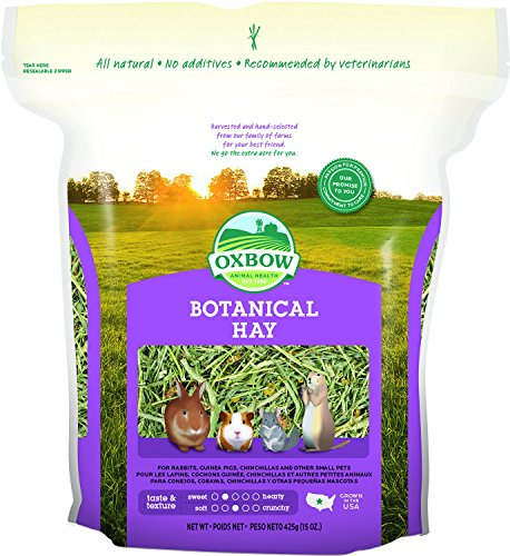 Oxbow Animal Health Botanical Hay for Pets, (Oat Hay)