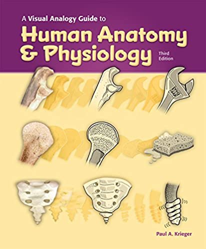 amazon com a visual analogy guide to human anatomy physiology 3e rh amazon com a visual analogy guide to human anatomy and physiology pdf visual analogy guide to human anatomy and physiology 3rd edition
