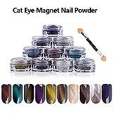 10 COLORS 1g/Box 3D Effect DIY UV Gel Poland Magic Mirror Cat Eye Magnet Dust Twinkle Nail Art Powder + Magnet Pen