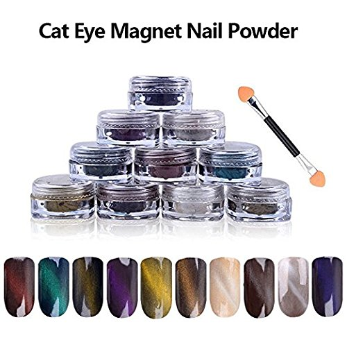 10 COLORS 1g/Box 3D Effect DIY UV Gel Poland Magic Mirror Cat Eye Magnet Dust Twinkle Nail Art Powder + Magnet Pen ZJchao