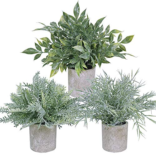 3 Pcs Mini Artificial Potted Plants Assortment Faux Grey Green Fern Boxwood Glass Greenery in Pots for Farmhouse Outdoor…