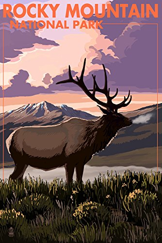 Rocky Mountain National Park, Colorado - Elk and Sunset (12x18 Signed Print Master Art Print w/Certificate of Authenticity - Wall Decor Travel Poster)