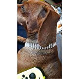 Rella Home Adjustable Dog Collar Necklace for Small Dogs Cats, White Fine Cute Puppy Collars for Chihuahua Pet Accessories