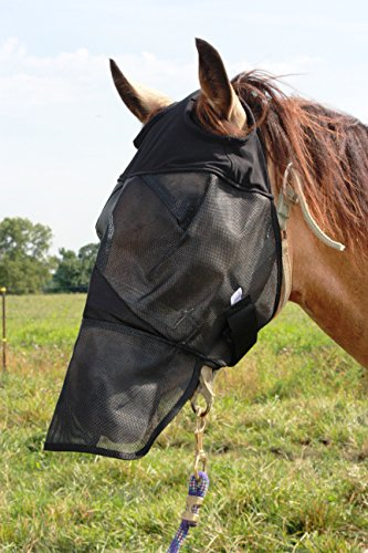 Horse Fly Mask with Long Nose, All Around Barn, Stable, Pasture, Trail Riding Fly and Sun Protection - Style: with Long Nose - Size: Arab, Cob, Small Quarter Horse