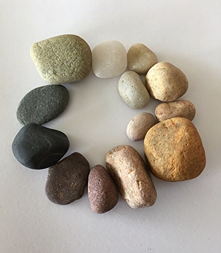LAMINATED POSTER Pebbles Color Colored Beach Stones Smooth Circle Poster 24x36 Decal - Pebbles Circle