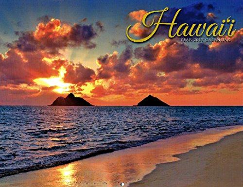 Hawaii Calendar 2017 Hawaiian waterfall