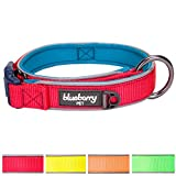 """Blueberry Pet 4 Colors Soft & Comfy Summer Hope 3M Reflective Padded Dog Collar, Fluorescent Pink, Large, Neck 18""""-21.5"""", Adjustable Collars for Dogs"""