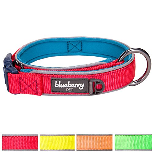 [Blueberry Pet 4 Colors Soft & Comfy Summer Hope 3M Reflective Padded Dog Collar, Fluorescent Pink, Large, Neck 18