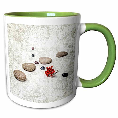 3dRose Alexis Photography - Objects Zen - Intersection of stones and pebbles, cluster of red rowan berries. Zen - 11oz Two-Tone Green Mug (mug_265666_7)