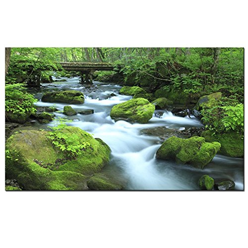 Sea Charm - Forest Stream Print on Canvas - Gallery Wrapped Canvas - Modern Home Office Decoration Rainforest Wall Art - Landscape Giclee Art Ready to Hang - 24''x40'' by Sea Charm