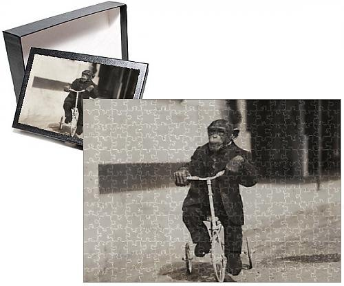Photo Jigsaw Puzzle of Chimpanzee at Earl s Court Exhibition