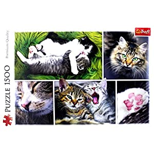 Trefl 26145 1500pcs Puzzle Puzzles Jigsaw Puzzle Animals Children Adults Just Cat Things Collage Cat Boygirl