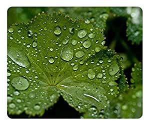 Fresh Water Drops On A Green Leaf Mouse Pad - Durable Office Accessory Desktop Laptop MousePad and Gifts Gaming mouse pads by runtopwell