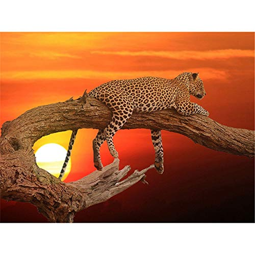 - Diy 5D Diamond Painting By Number Kits Full Drill Rhinestone Embroidery Cross Stitch Pictures Arts Craft For Home Wall Decor, Branch Leopard,11.8 X 17.7 Inch