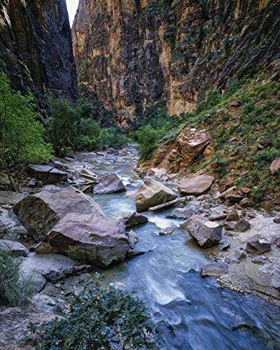 Virgin River Narrows, Zion National Park, Utah, landscape photo, nature photography, wall art, home decor, office decor, sizes up to 44x66 inches, fine art print, signed by the artist.