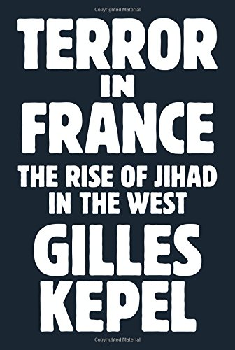 Image of Terror in France: The Rise of Jihad in the West (Princeton Studies in Muslim Politics)