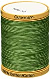 Natural Cotton Thread Variegated 876 Yards-Foliage Green